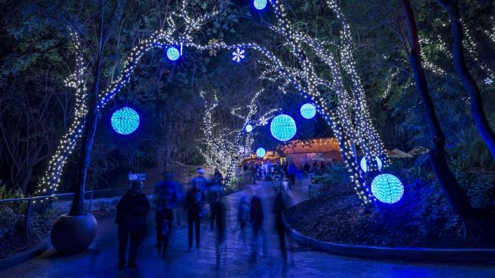 116 Zoo Lights-Jame Pham12232