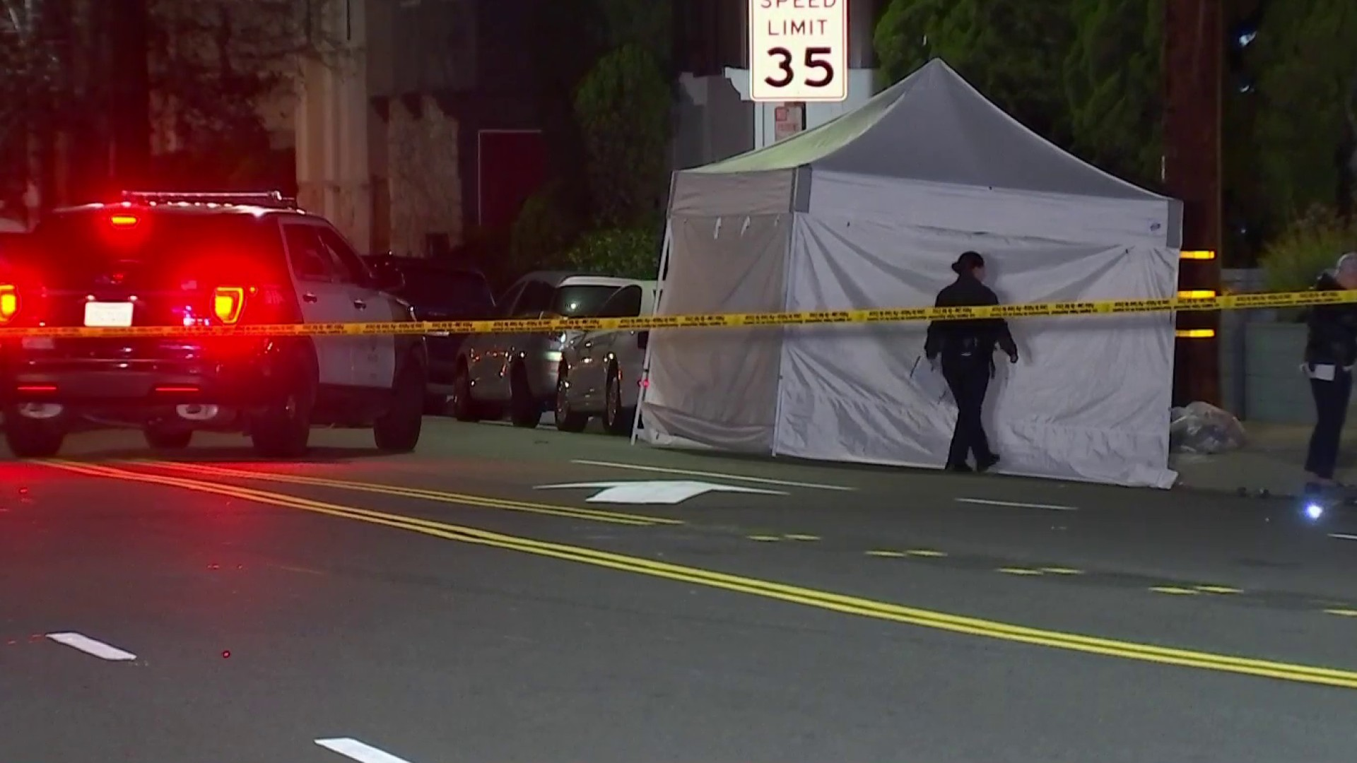 Driver Arrested After Woman Killed in Playa Del Rey Hit-and-Run