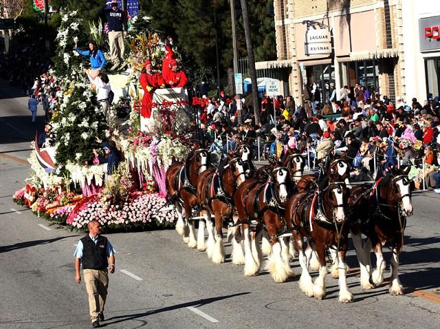 010110 Rose Parade Busch