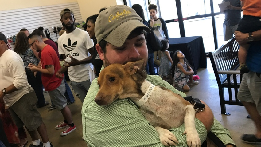 Clear the Shelters Brandywine SPCA Furlong 4 Dog Hug
