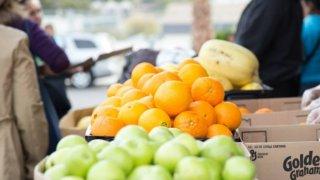 Fruit-Food-Generic