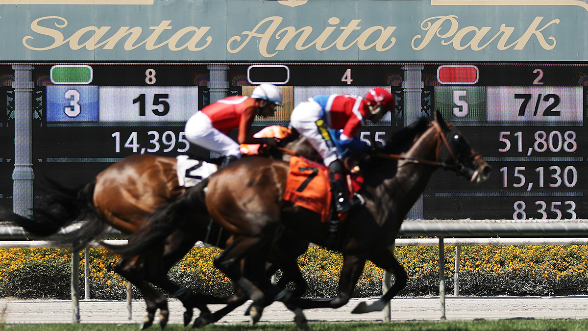 1 Man 1 Horse Video Link los angeles animal board to weigh horse racing ban – nbc los