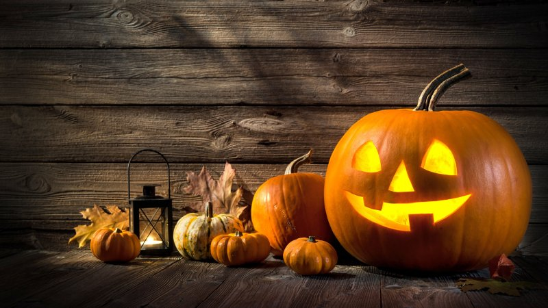 Enjoy Fall Family Fun Times, Without the Frights
