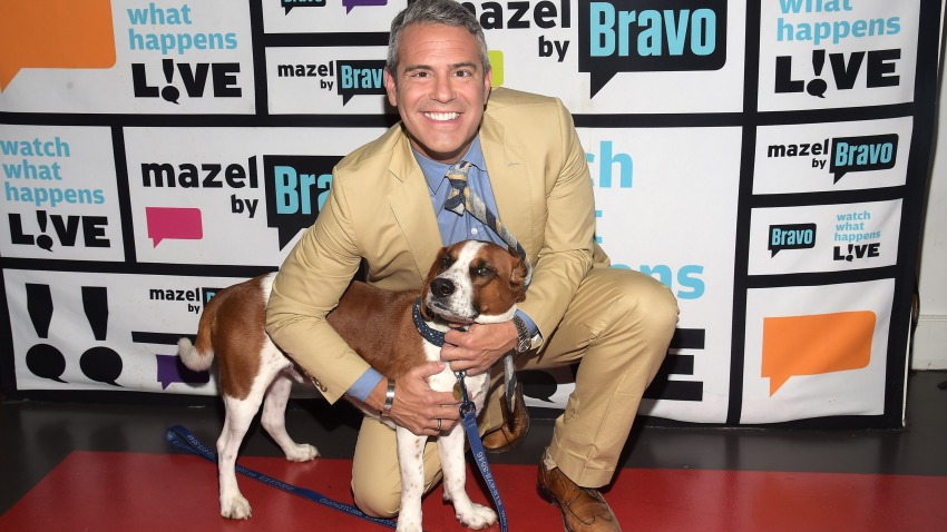 Andy Cohen with Wacha