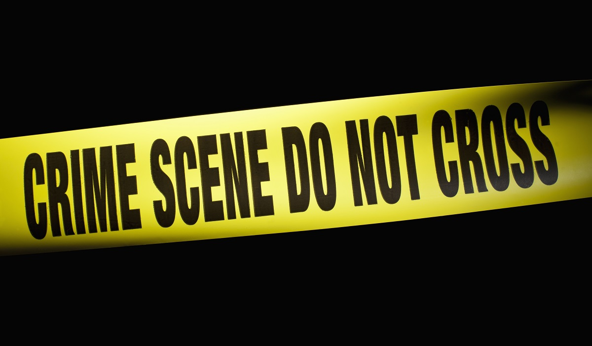 Police Pursuit Ends in Fatal Rollover Crash