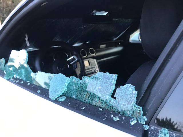 Pictures: 50 Cars Vandalized in Whittier Overnight