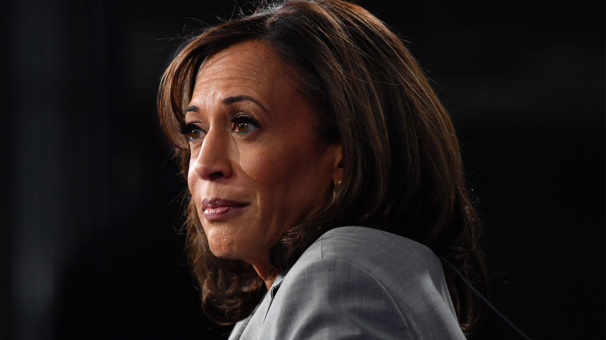 Harris VP Pick Creates Dilemma for Trump Campaign, Which Lobs Conflicting Attacks 1