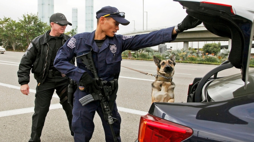 LAX Security