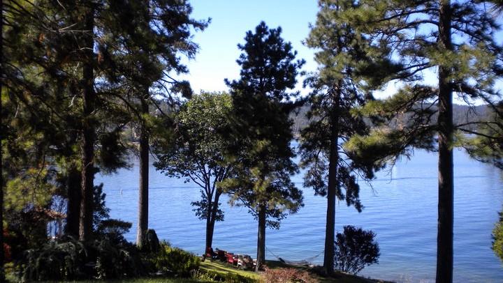 LakeArrowheadtrees