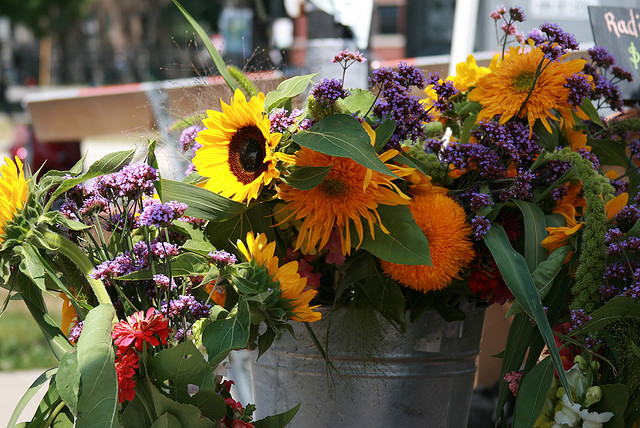 Logan Square Farmers Market flowers