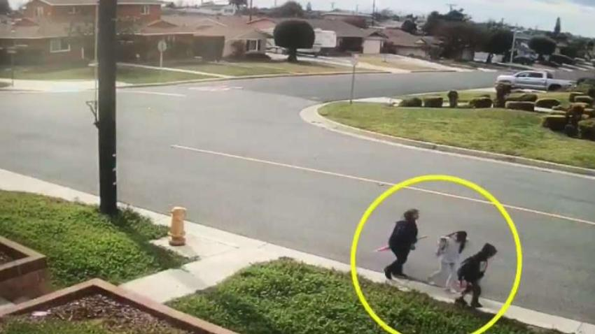 New_Video_Shows_Car_in_Hit-and-Run_That_Left_Grandma_Dead.jpg