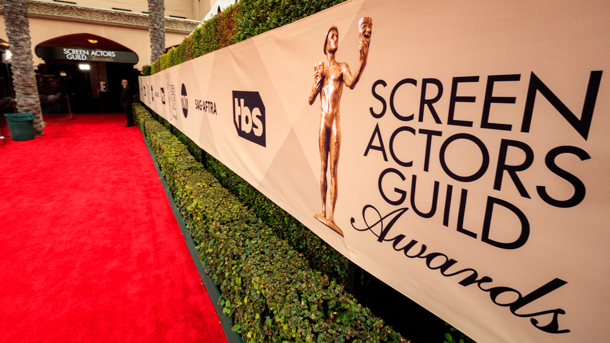 sag awards - photo #8
