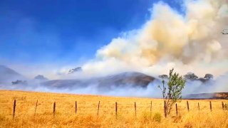 The Crews Fire in Gilroy.