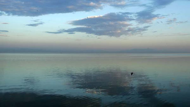Salton Sea1