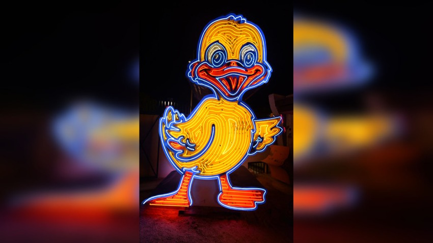 Ugly Ducking Neon Museum
