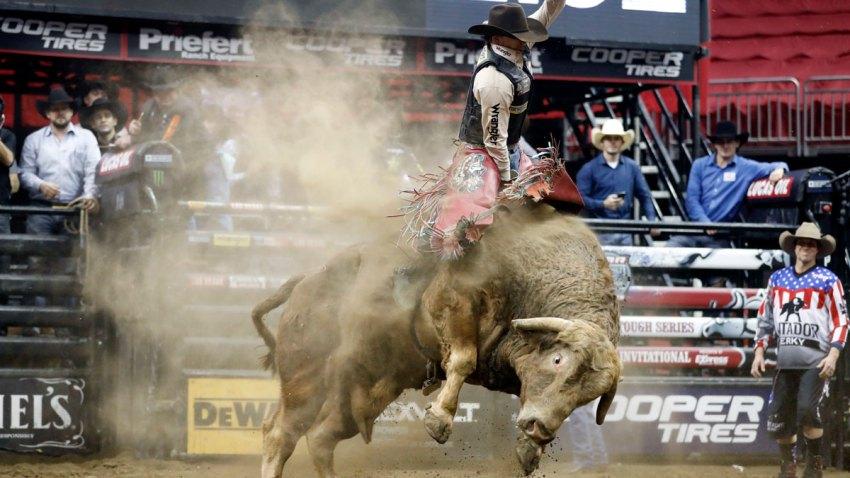 Pro Rodeo Death