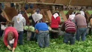 campesinos california pago horas extras telemundo 52 los angeles