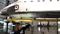 Animals Visited Endeavour While We Stayed Home