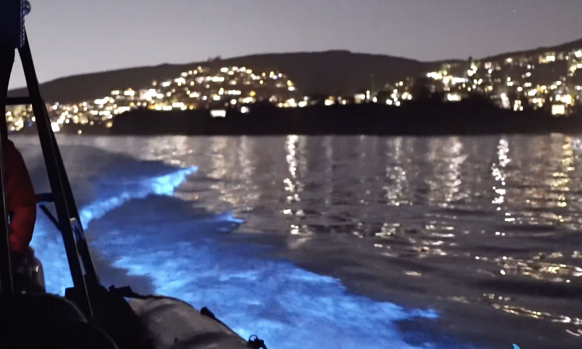 See Eye-Catching Electric Blue Waves on the Southern California Coast – NBC Los Angeles