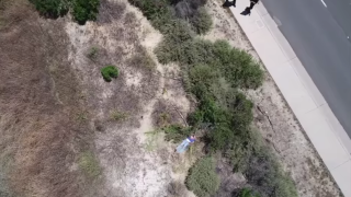 Video from a drone shows a missing woman hidden behind brush.