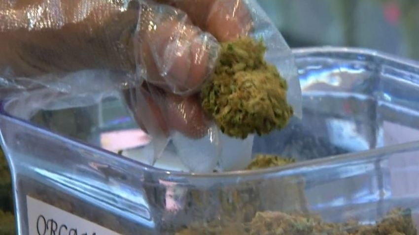 legal-weed-vote-050416