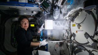 UCSD alum and NASA astronaut Jessica Meir conducts experiments in space.