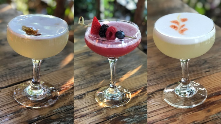 piscosours02929921