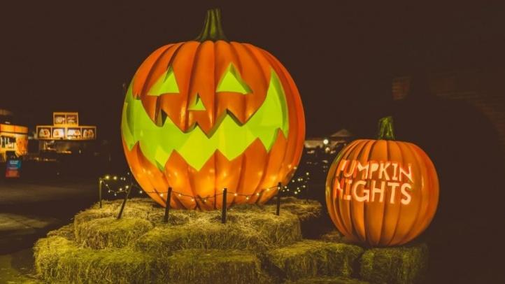 pumpkinnights0292932