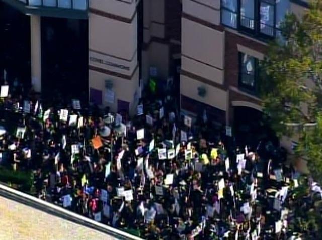 ucla protestors