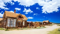 Friends of Bodie Day Materializes Online