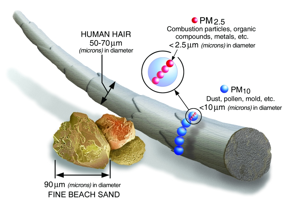 This graphic provided by the Environmental Protection Agency shows size comparison for particulate matter..