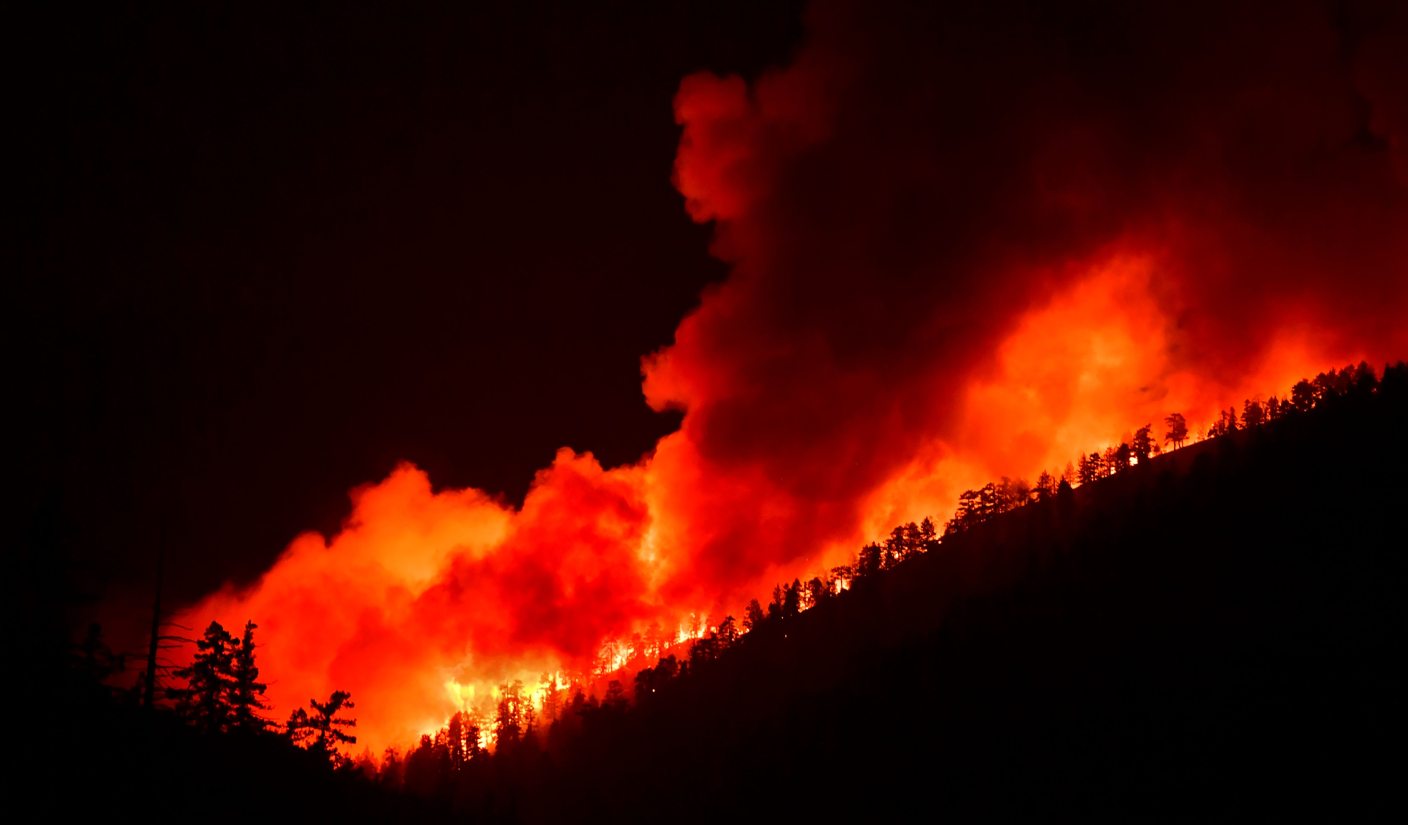 Bobcat Fire Containment Reaches 50 Percent, Marking Progress in Angeles National Forest