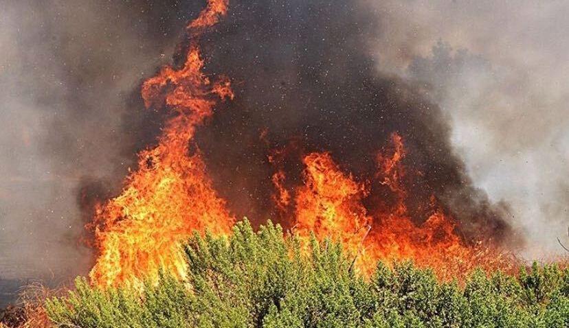 Sepulveda Basin Fire