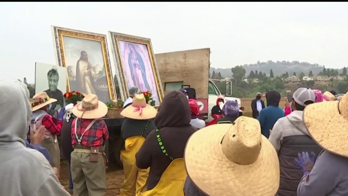 Image of the Virgin of Guadalupe Visits Field Workers in Moorpark