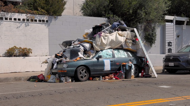 Maggots, Rodents, and Fleas: LA's Garbage Problem Getting Worse During Pandemic