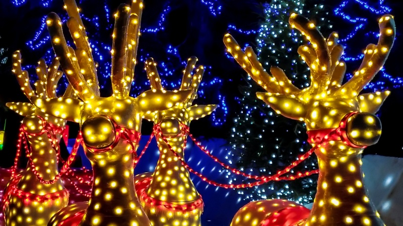 Holiday Happenings Are on a Roll Around SoCal