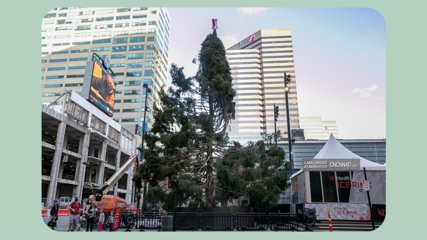 Christmas Shows 2020 On Nbc Misshapen Cincinnati Christmas Tree Is the Perfect Depiction of