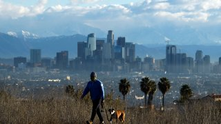 A person walks his dog with downtown LA in the background.