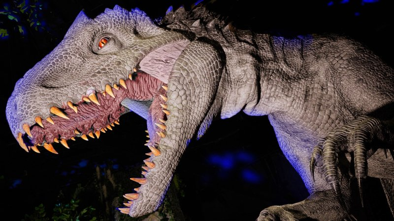 Universal Studios Hollywood Is Roaring to Go