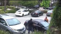 Woman Fends Off Suspected Car Thief