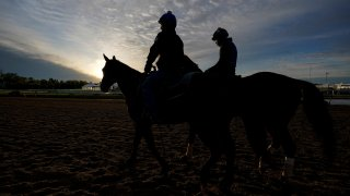 Preakness Horse Racing