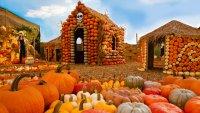 Mr. Bones Pumpkin Patch Will Hatch Again This Fall