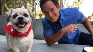 NBC4 Clear the Shelters with Anchor Adrian Arambulo