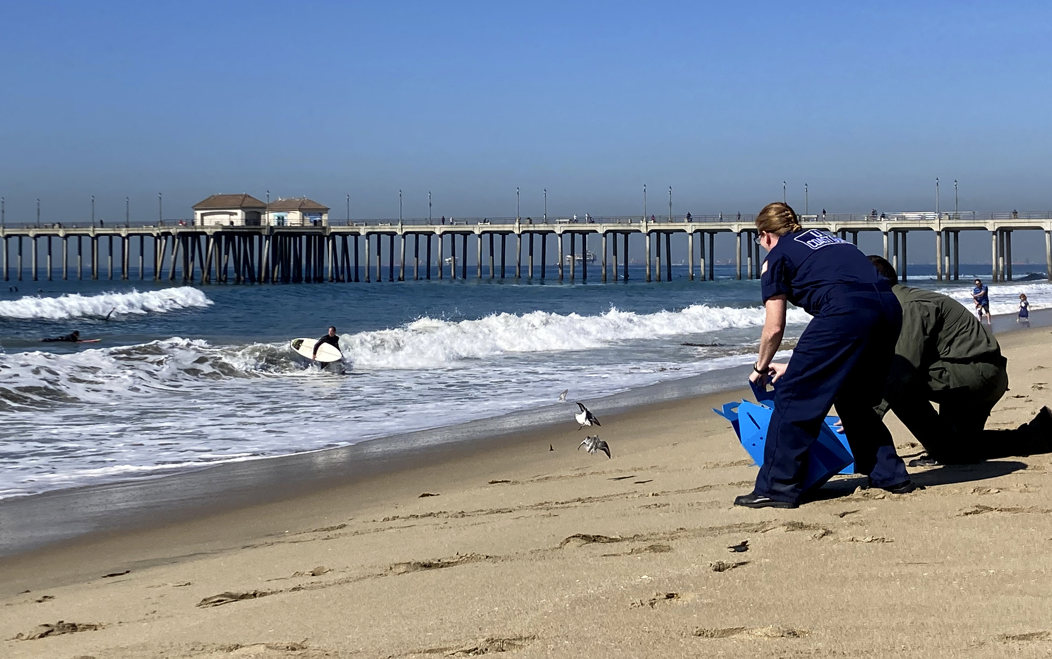 Environmentalists Want President to Stop Offshore Drilling After Huntington Beach Oil Spill