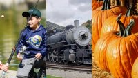 Outdoor, Free, and Fun: Find Family Events This Weekend