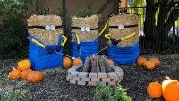 Scarecrows Summon Smiles in the Santa Ynez Valley