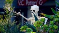 A Seaside Skeleton Hunt Will Haunt This Quaint Harbor