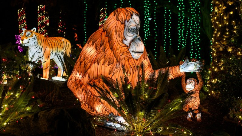 Sparkle Sparkle: LA Zoo Lights Tickets Go on Sale