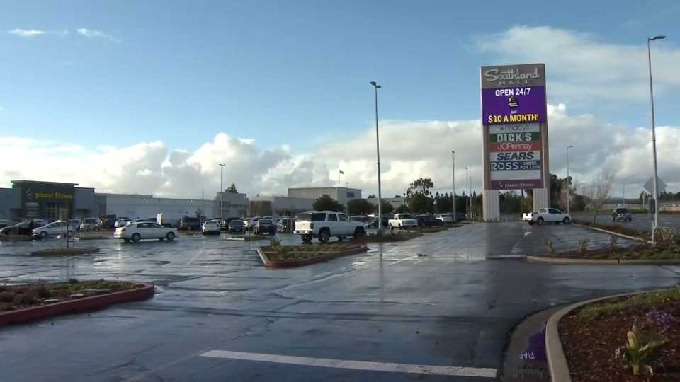 Bat Found at Southland Mall Tests Positive for Rabies