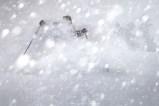 Great Ski Scene